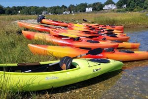 A bunch of kayaks waiting to be launched